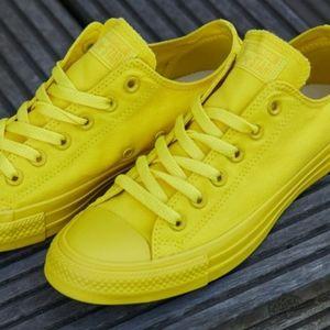 🆕Converse   CTAS Ox Unisex Sneaker